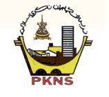 logoPKNS_new